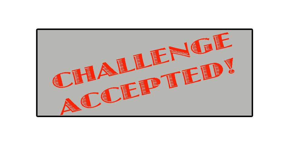 challenge accepted savvyproblogger